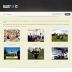 Verve catering gallery page website design